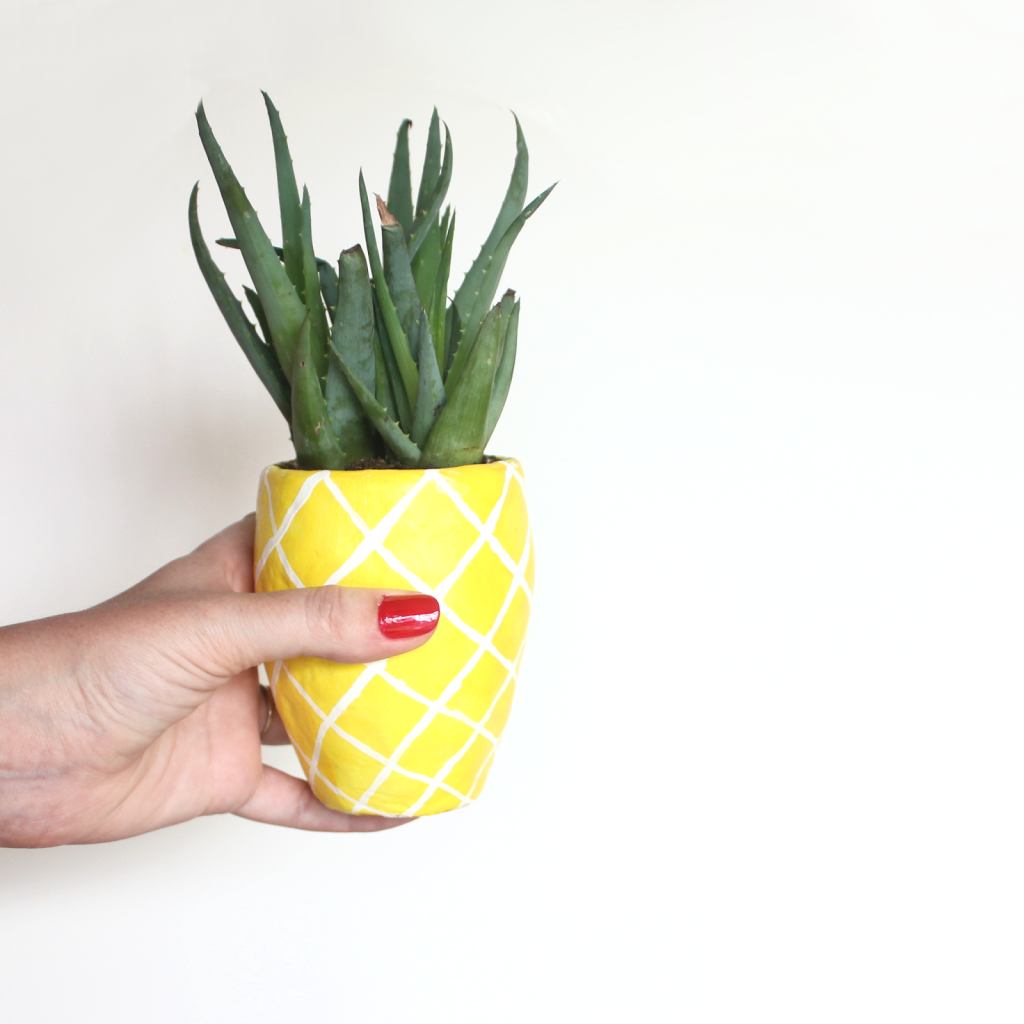 Diy succulent pineapple planter lines across for How to plant a pineapple top in a pot